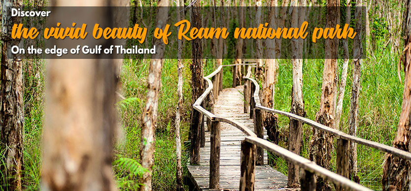 Discover The Vivid Beauty Of Ream National Park