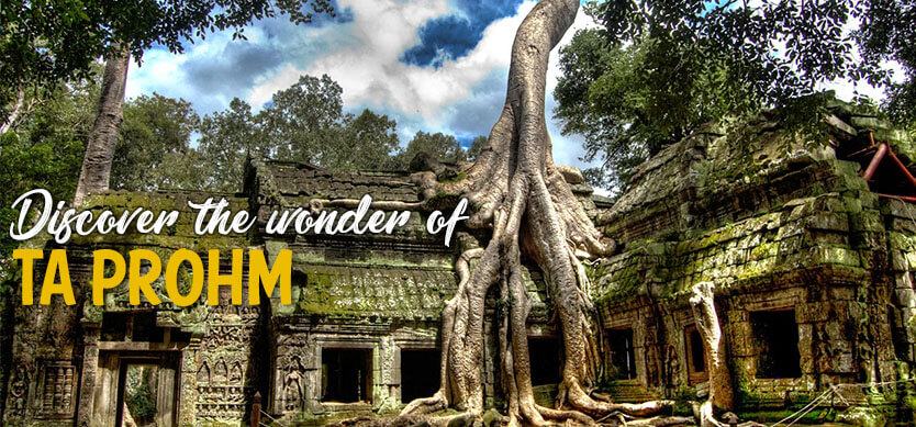 Discover the wonder of Ta Prohm