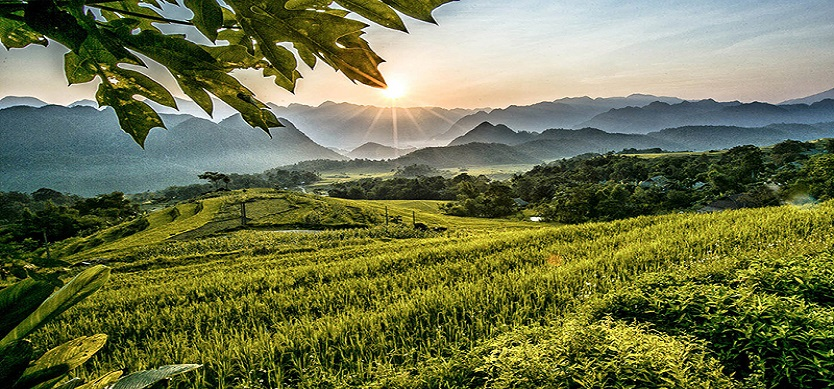 Where to go on Independence Day: Explore the dreaming and poetic nature in Pu Luong Nature Reserve