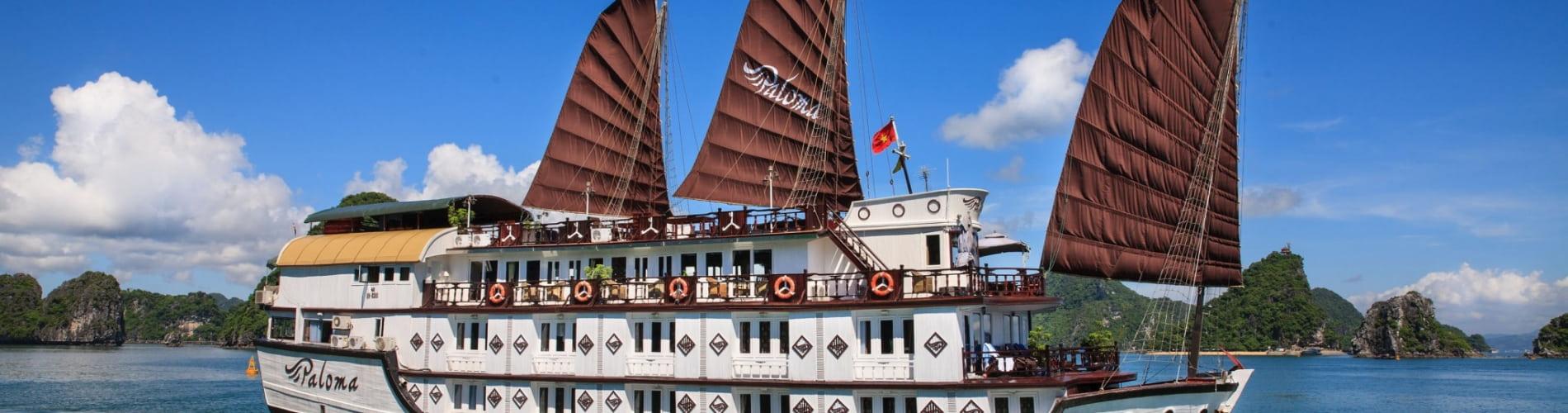 Paloma Cruise