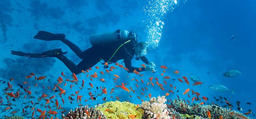 The best Vietnam scuba diving spots for stunning coral reefs