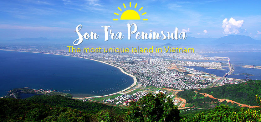 Son Tra Peninsula - The most unique island in Vietnam