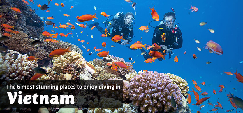 The 6 most stunning places to enjoy diving in Vietnam