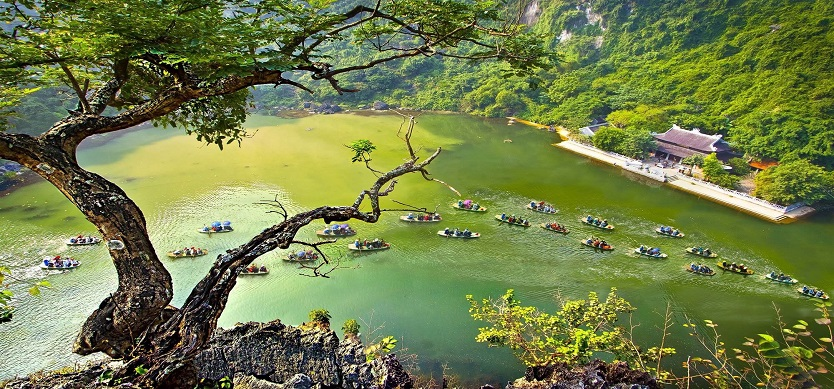 Top 5 National Parks In Northern Vietnam