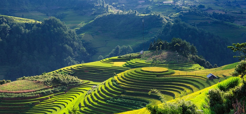 Top must-try things to do in Vietnam