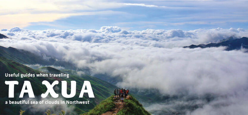 Useful guides when traveling Ta Xua - a beautiful sea of clouds in Northwest