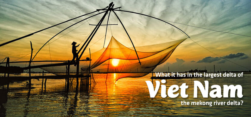 What It Has In The Largest Delta Of Vietnam-The Mekong River Delta?