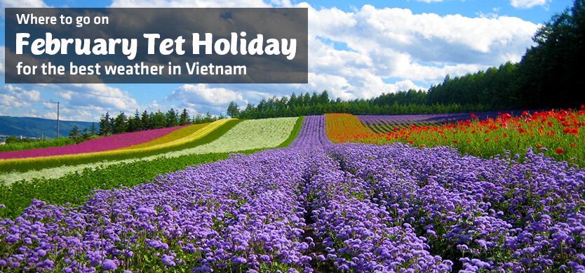 Where to go on February Tet holiday for the best weather in Vietnam?