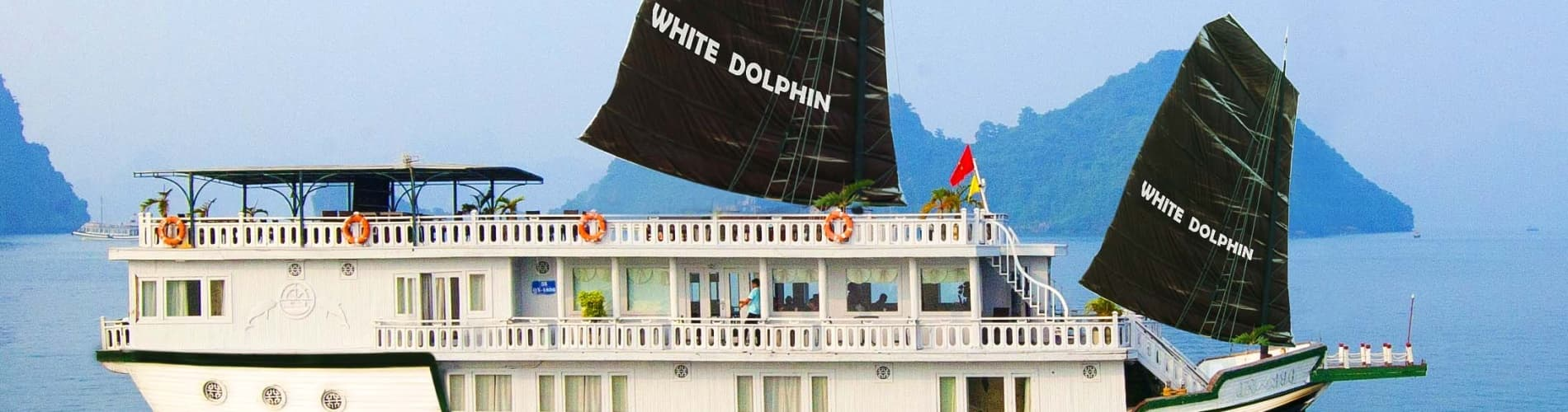 White Dolphin Cruises