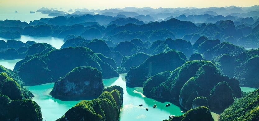 The Untouched Biodiversity of Halong Bay