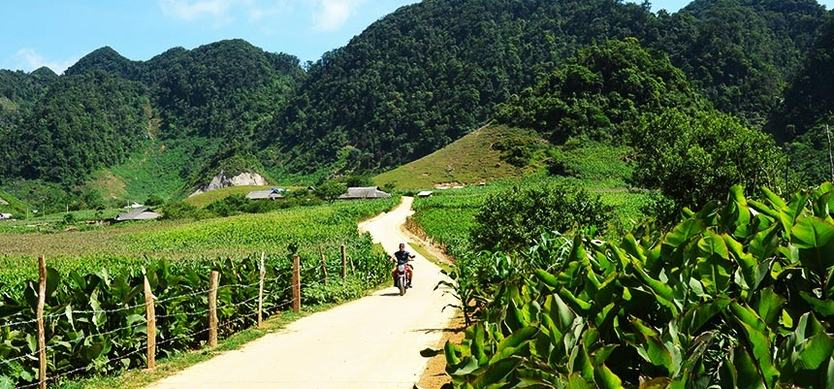 Pa Co – A different side of Mai Chau
