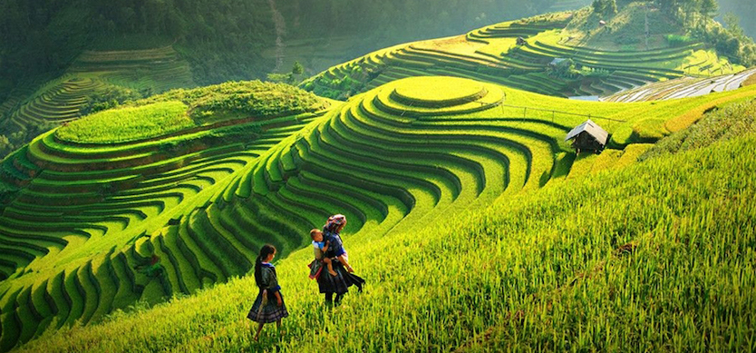 Sapa travel experience for the first-time travelers