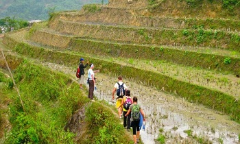 Sapa Trekking Homestay Offers 10% Discount for Early Bird Booking