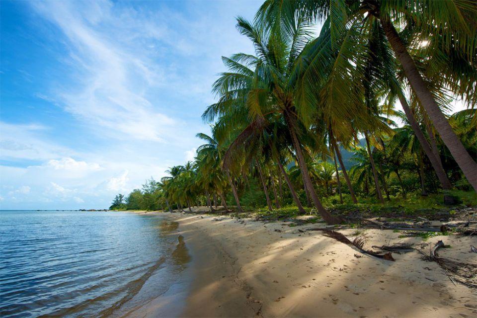 pineapple-island
