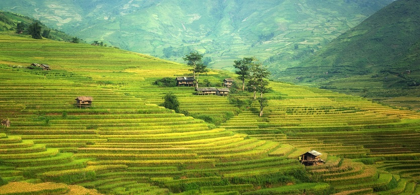What are needed experiences when coming to Sapa?