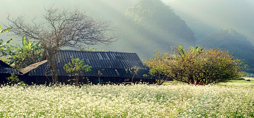When is the best time to visit Mai Chau?