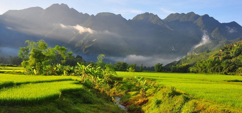 Where to visit in Mai Chau?