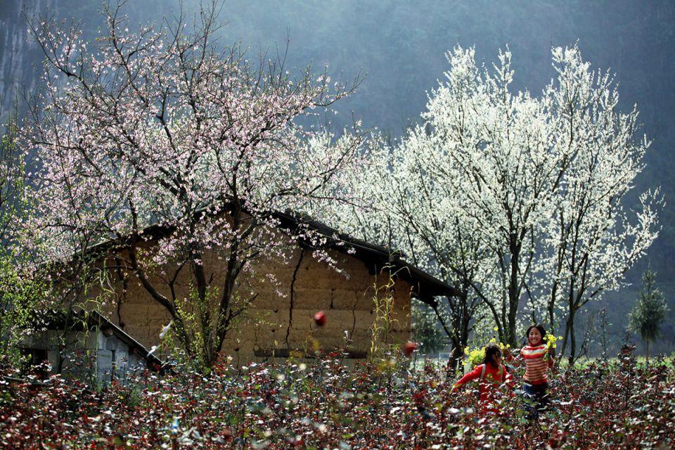 spring-hagiang