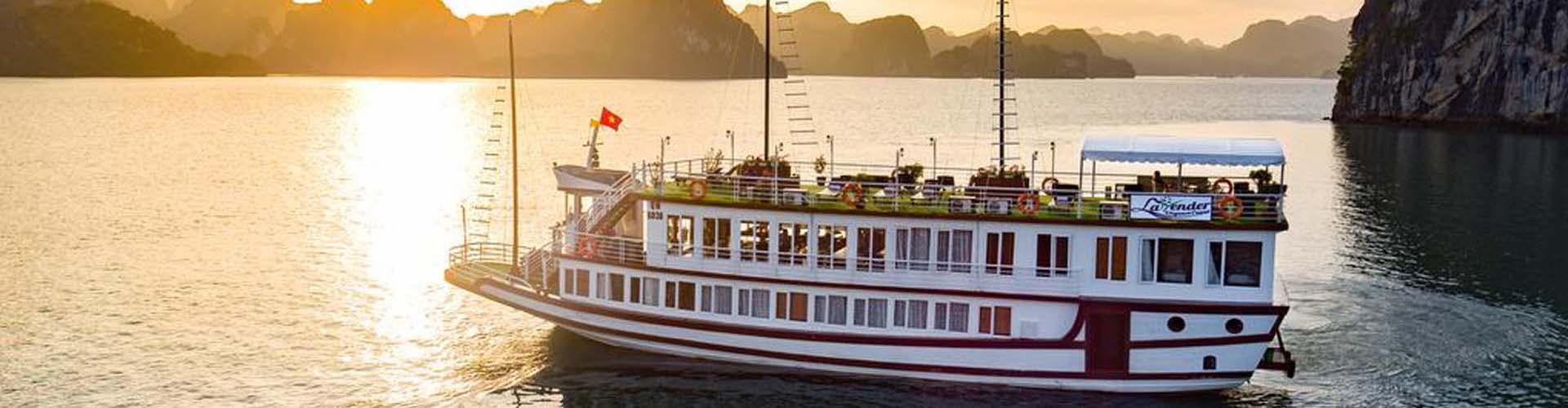 Lavender Cruise