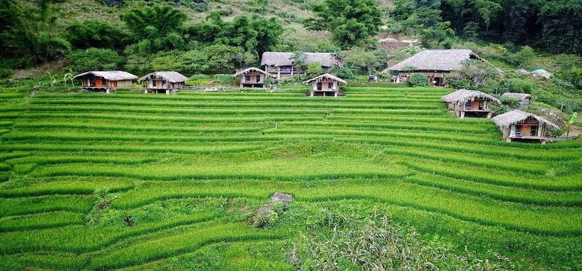 Sapa - Where it is actually located?