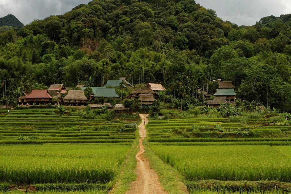 fr-pu-luong