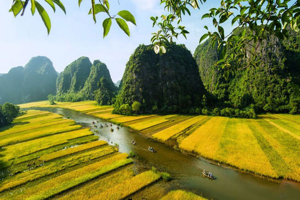 rice-field-in-tam-coc-area-960
