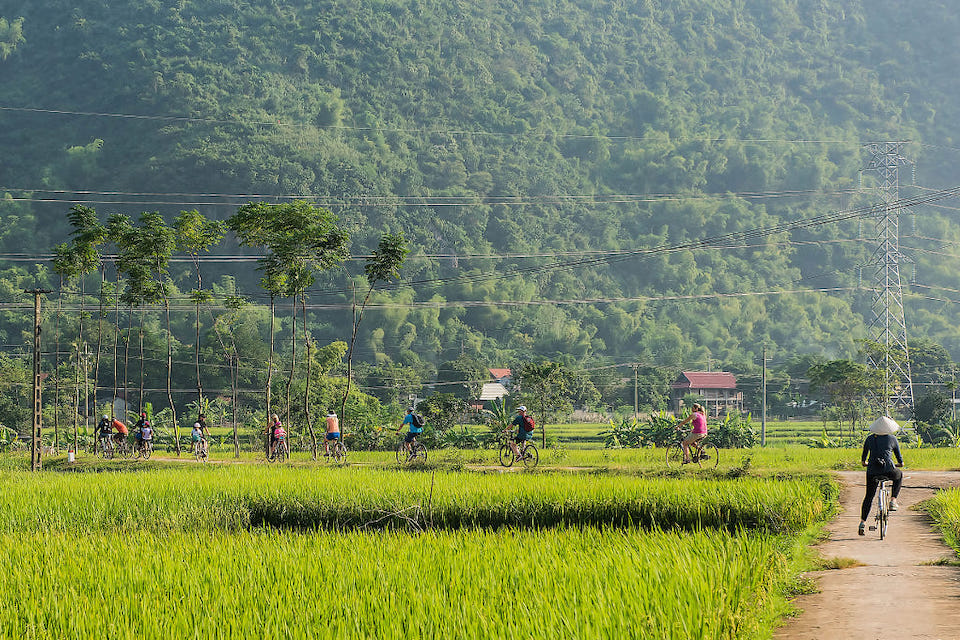 mai-chau-rice-field