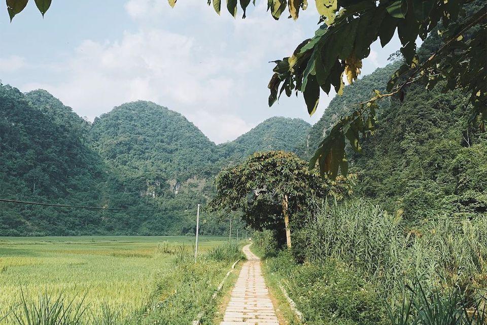 pu-luong
