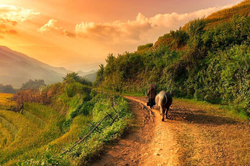 sapa-trekking-and-market-3d4n-5