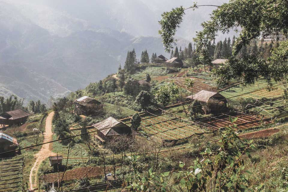 sapa-trekking-bac-ha-market-3d4n-9
