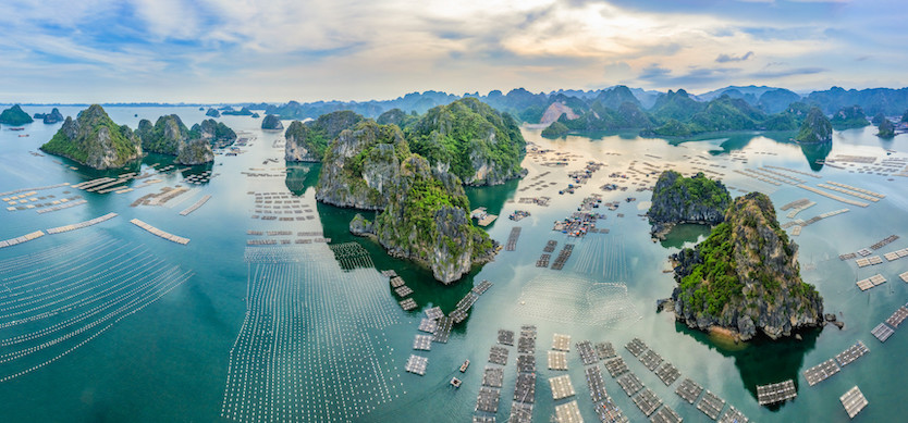 The most beautiful fishing villages in Halong Bay and Bai Tu Long Bay