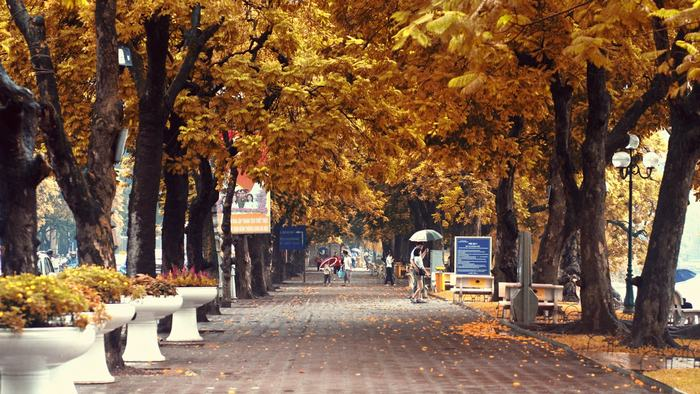 Hanoi street in autumn