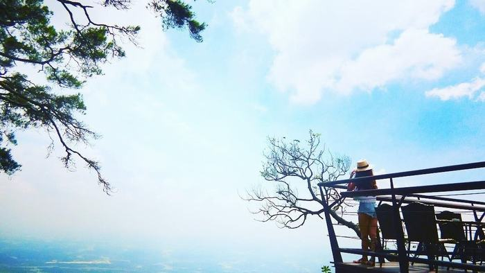 The beauty of Tam Dao