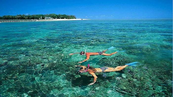 Swimming in the clear water