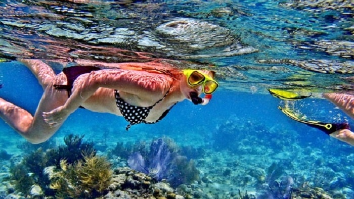 Diving to explore the underwater world