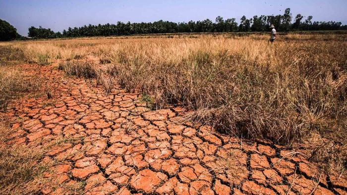 Drought in Mekong Delta