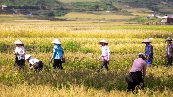 People in Mai Chau