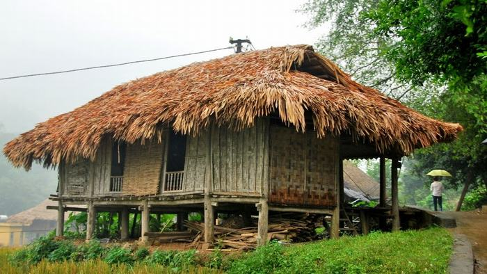 Muong houses