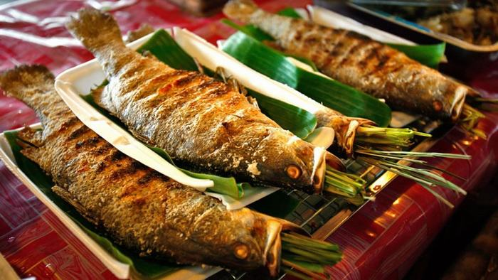The grilled fish