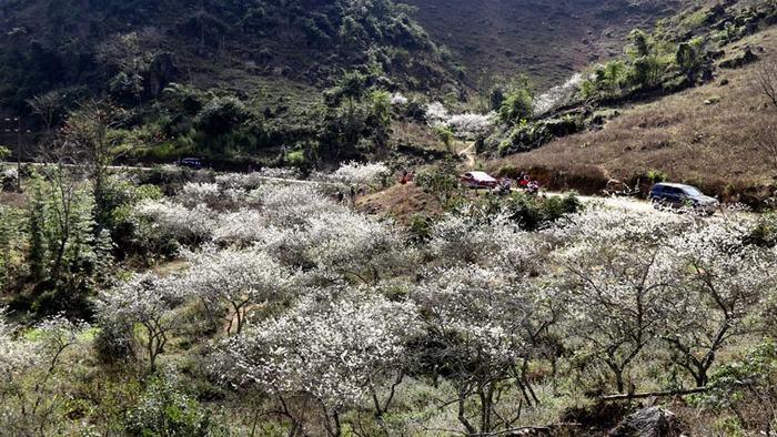Spring in Pa Co