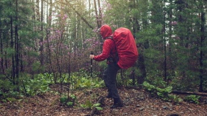 prepare carefully when trekking in the forest