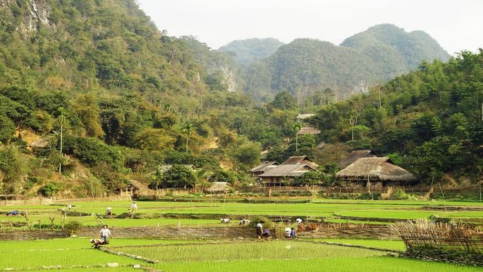 Village in Mai Chau