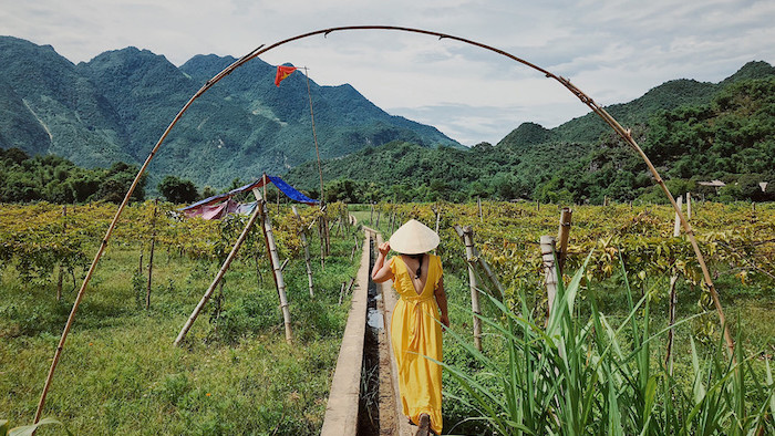 Traveling to Mai Chau in spring