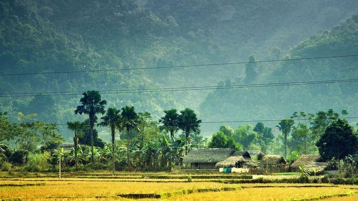 The poetic scenery in Mai Chau