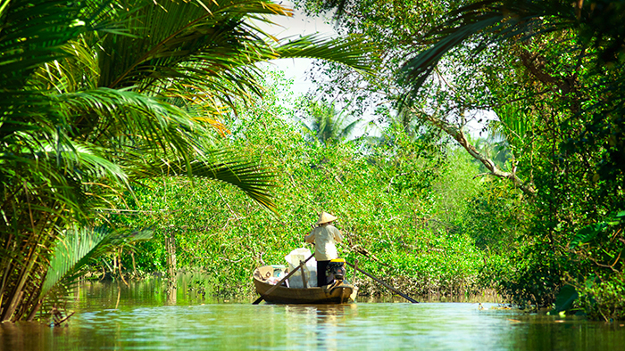The floating season in the MEkong Delta