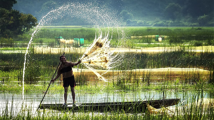 The Mekong Delta's rich nature