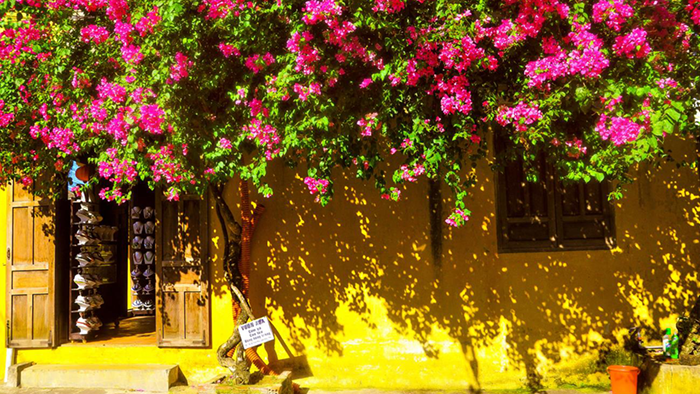 The featured yellow color of the houses in Hoi An (hoianworldheritage.org.vn)