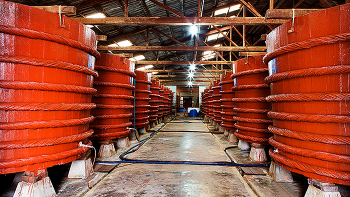 A fish sauce factory on Phu Quoc