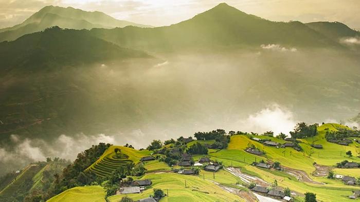 Ha Giang's golden terraced rice field