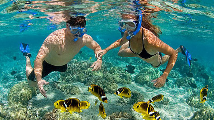 Diving experience in Phu Quoc